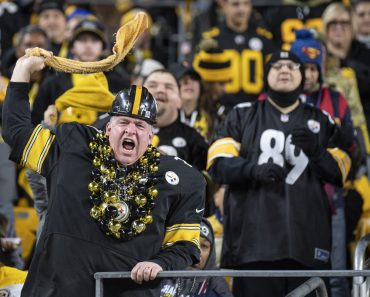 PITTSBURGH, PA - NOVEMBER 10: A Pittsburgh Steelers fan waves a terrible towel during the NFL, American Football Herren,